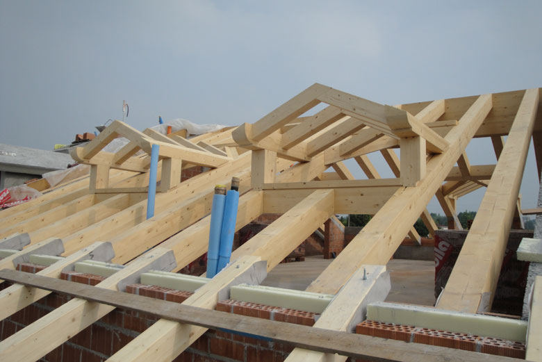 Realizzazione lucernari e abbaini per tetti in legno for Montaggio velux